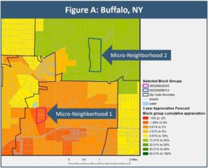 Buffalo investment risk